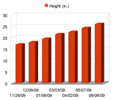 Impressive Height Gains!