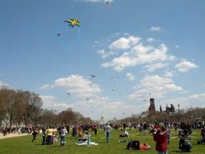 Kites over National Mall